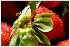Juicy (scrapping61) Tags: red macro green fruit strawberry 2009 tistheseason bej fineartphotos colorphotoaward betterthangood scrapping61 dragondaggerphoto daarklands