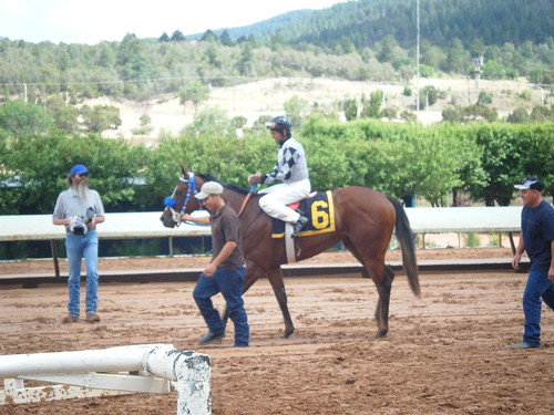Horse @ Ruidoso Downs NM
