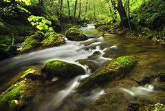 Rio Ayuda (cargim) Tags: paisajes primavera agua arboles nikond200 fotomania nikonflickraward grouptripod flickrpopularphotographer grandemadreamataterra elclickdenikon camaranikond200
