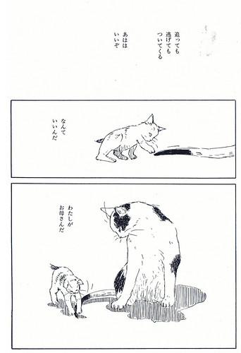 syowaruneko_ooi