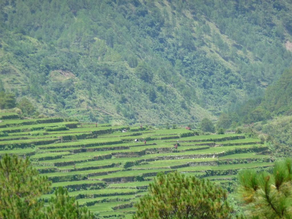 Route-Banaue-Bontoc (40)