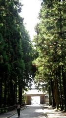 IMG_3248 (foreverstudent) Tags: japan matsushima miyagi