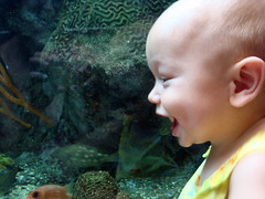 r. at the aquarium