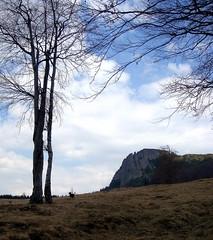 Milyen szép a világ! /  What a wonderful world! (debreczeniemoke) Tags: dog landscape land piton kutya transylvania táj tájkép gutin erdély frakk kakastaréj sziklabérc creastacocoşului