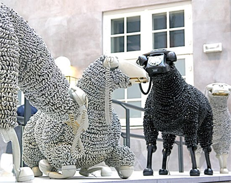 07_sheep09