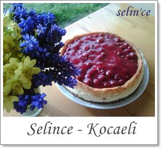 selince