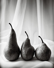 Pears On Voile (Andy Brown (mrbuk1)) Tags: stilllife food classic texture fruit mono three blackwhite traditional curtain naturallight size fabric repetition arrangement speckled gauze perishable