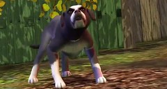 Sims 3 Pets 33