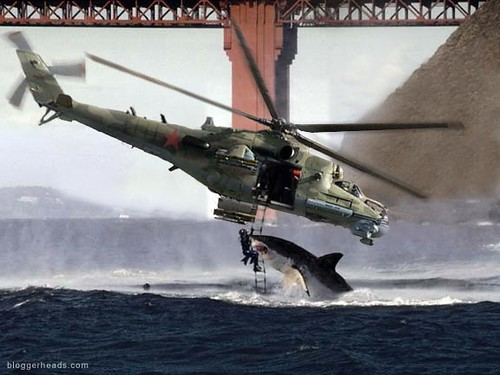 Helicopter and Shark