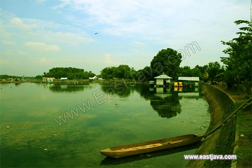 Ranu Grati Lake - Pasuruan - East Java