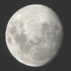 The moon seen from Tauranga NZ