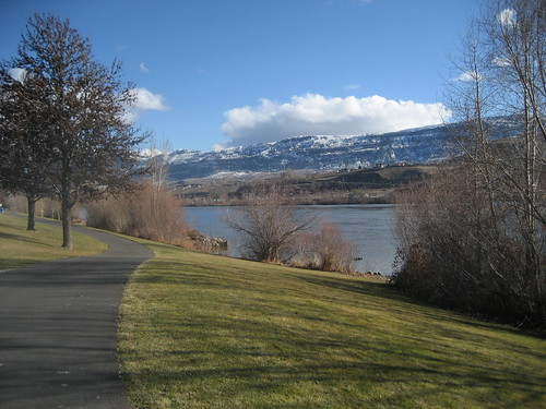 Columbia River View I