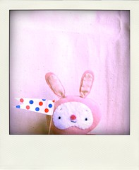 Pink clown bunny poladroid