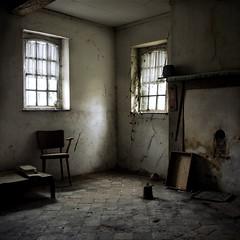(moggierocket) Tags: old windows netherlands stone vines fireplace farm room ivy d200 chiaroscuro abandonment 500x500 fivestarsgallery winner500