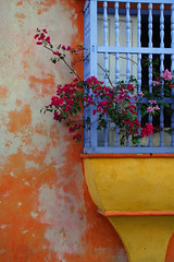Cartagena de Indias (Eric Dupuis) Tags: poverty city flowers windows flores streets architecture fleurs buildings photography arquitectura edificios colombia cityscape colours photographie couleurs ciudad colores neighborhood ventanas caribbean walls fotografia cartagena rues ville calles paredes barrios murs surprising caribe fentres paisajeurbano carabes pauvret sorprendente bougainvilliers pobresa photoderue neighbourhoods difices paysageurbain ericdupuis cartagenadeindias quartiers surprenant flordehavana