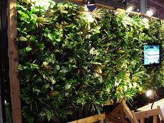 Green Living Show - green wall