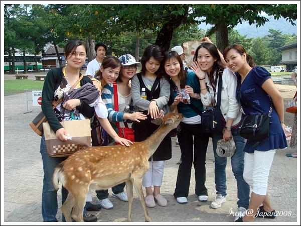 090508_23_奈良公園