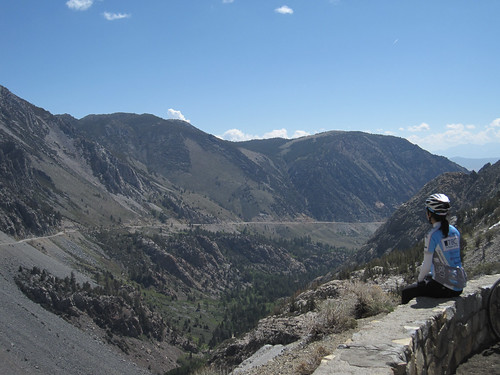 Tioga Road (East Side) View