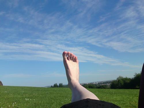Wind sock