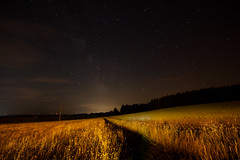 Fields of Stars (Giuseppe Bognanni) Tags: longexposure field stars nightshot iso1600 milkyway thenight mywinners