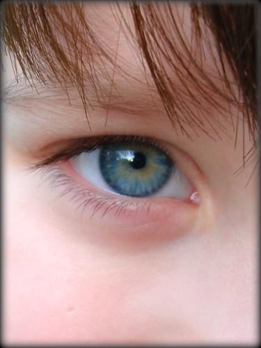 nt eyes3