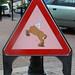 Beware Centaurs Ahead