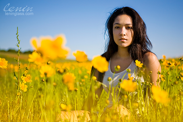IMAGE: http://farm4.static.flickr.com/3345/4575066170_2c9b1fab3e_o.jpg
