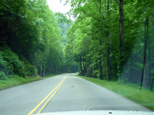 On the Road in the Great Smoky Mountains