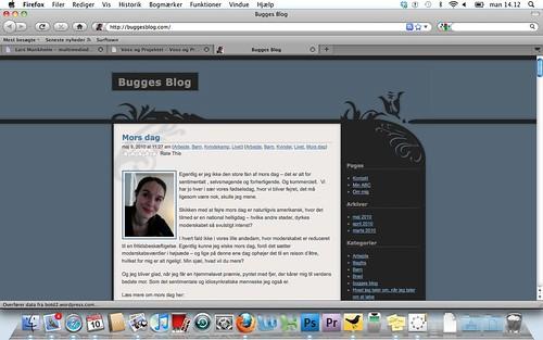 buggeblog_SD