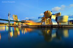 Museo Guggenheim Bilbao (Rawlways) Tags: museum night spain nikon bilbao d300