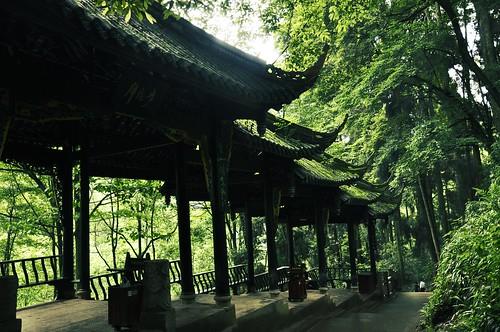 Qingchengshan 210