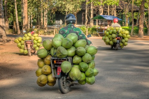 Coconuts on Bikes
