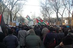 DSC_0080 (Osama ~!) Tags: wien demonstration palästina für