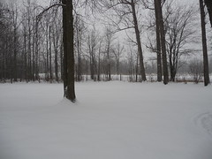 Snow in Ontario