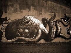 street art Ghent - Roa (_Kriebel_) Tags: street art graffiti belgium belgique belgi ghent gent gand roa kriebel roabot