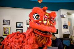 IMG_2685 (William Eng Photography (aka eggrollboy)) Tags: chinatown chinesenewyear lunarnewyear yearoftheox