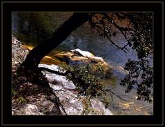Fundstcke (5) - findings (LauterGold) Tags: france nikond50 bach frame cadre rahmen borgne ruisseau cvennes photographyrocks languedocroussillion viewonblack