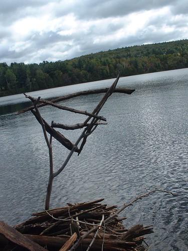 Abords du lac Pierre dans AMÉNAGEMENT PAYSAGER 3247440605_f86688bae6