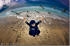 (mylaphotography) Tags: ocean beach toddler child navy earlymorning fisheye seabirds feedingbirds editedinlightroom rahislightroompresets 5dmarkii