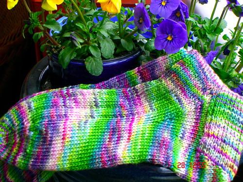 Socken aus dibadu-Wolle