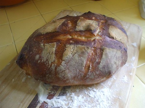my first Artisan Bread in 5 Minutes a Day