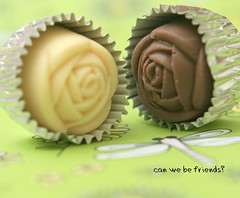 cokolat
