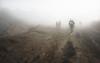 Thru the mist (B_cool) Tags: mountbromo