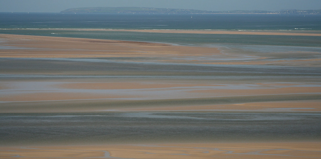 Polarised estuary