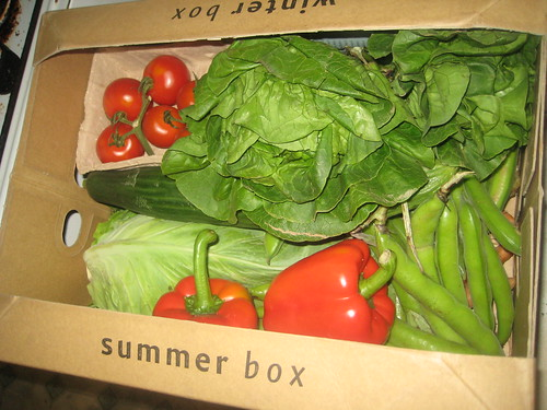 June 19th Organic Vegetable Box