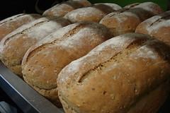 Peasant bread - bread making machine