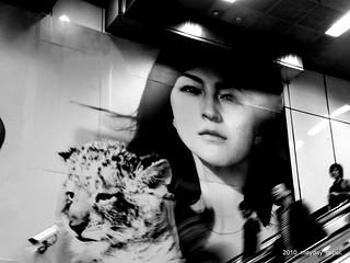 広末涼子 画像34