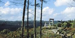 Sculpture Trail, Forest of Dean