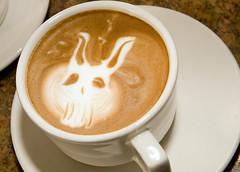 Frank (chrissymay) Tags: seattle bunny art cup coffee frank fremont steam foam christiaan morris latte chrissy donniedarko latteart darko chrissymay christiaanmorris
