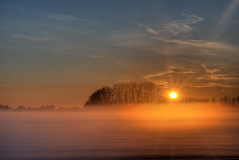 winter colors #6 (besimo) Tags: trees sunset sun nature fog steinhorsterbecken besimmazhiqi gettyimagesgermanyq1